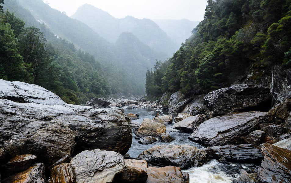 Franklin River, Tasmanian Wilderness World Heritage Area. Photo: GrantDixon