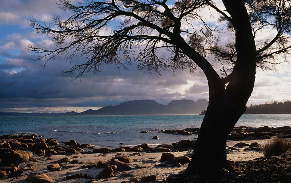 Cooks Beach, Freycinet National Park. Photo: Grant Dixon