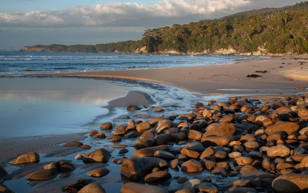 Remote beach, South Coast, Tasmanian Wilderness World Heritage Area. Photo: Nick Sawyer